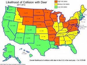 美國在路上撞到動物的機率地圖